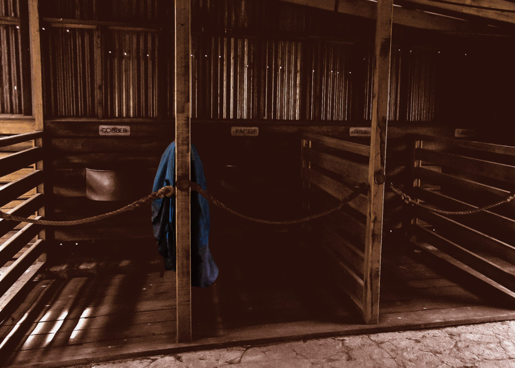 Pit Pony Stables